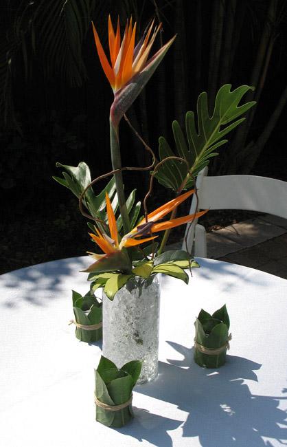 Lee Forrest Design Fresh Tropical Gallery